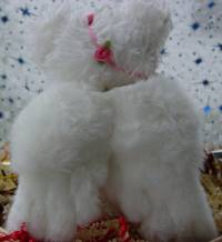 Wax Dip Scented Bear
